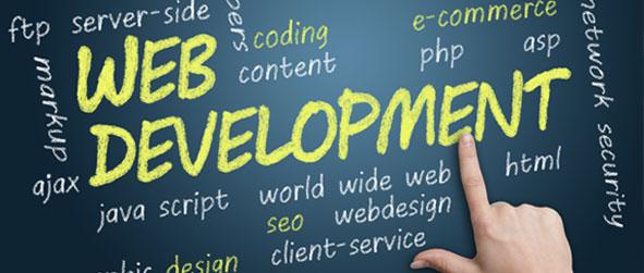 Web-design-8